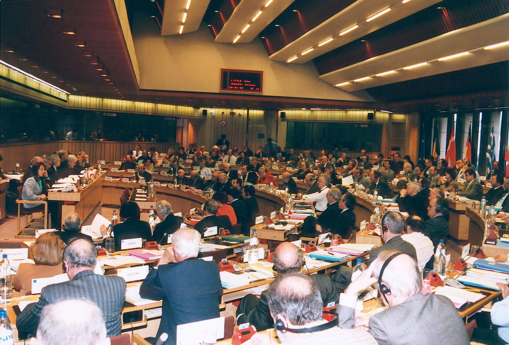 Session of the Economic and Social Committee (II)