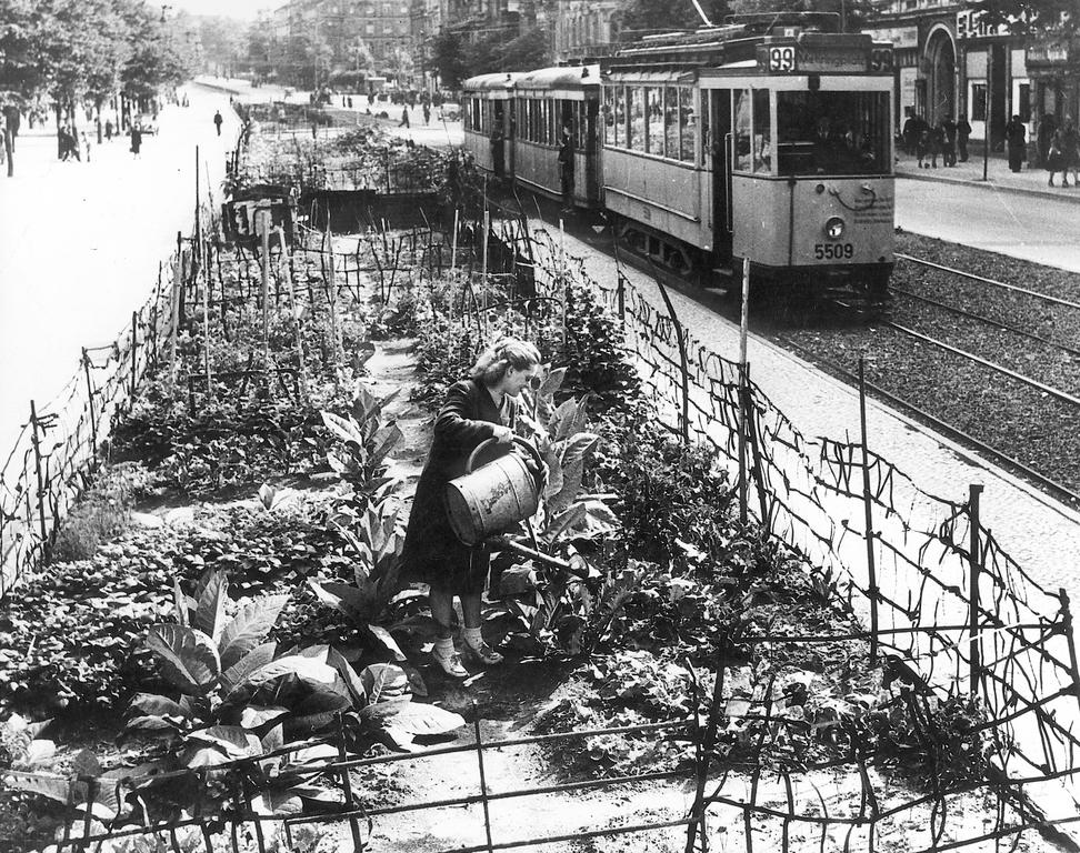 Economic hardship in Berlin (1948)