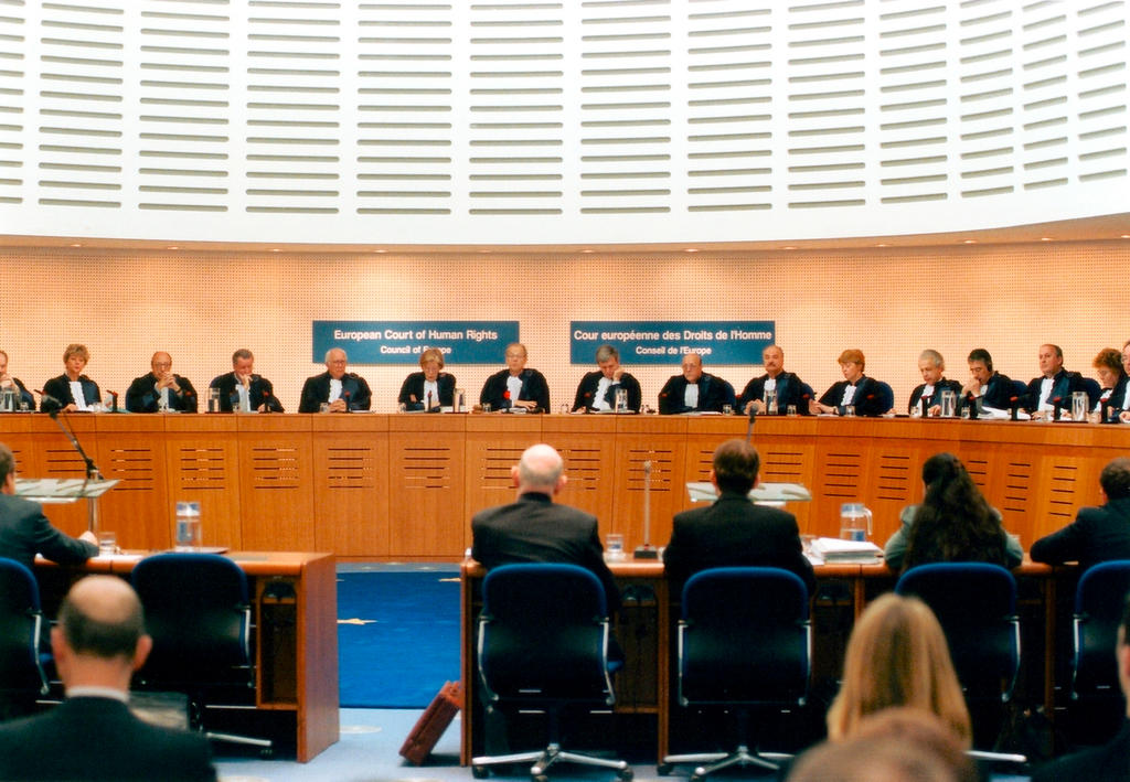 Hearing in the European Court of Human Rights (Strasbourg)