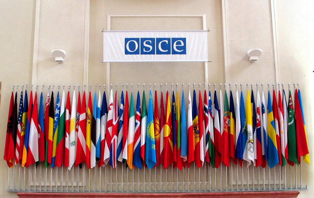 Flags of the 55 member countries of the OSCE (2004)
