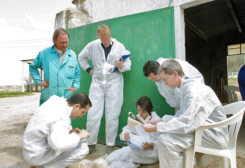 Audit work on the ground in Spain (April 2003)