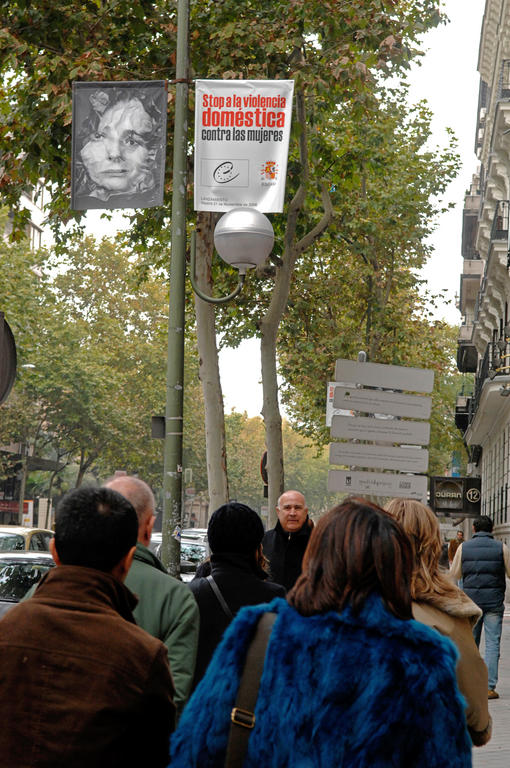Council of Europe campaign against domestic violence (Madrid, 27 November 2006)